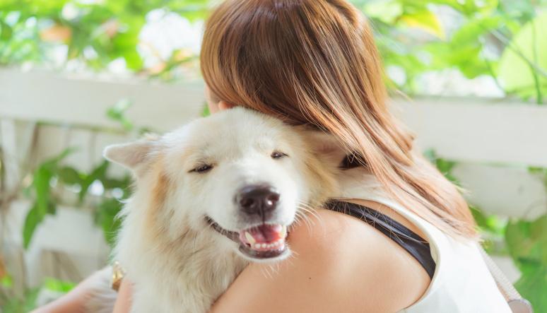 Doprajte svojmu psíkovi len to najlepšie